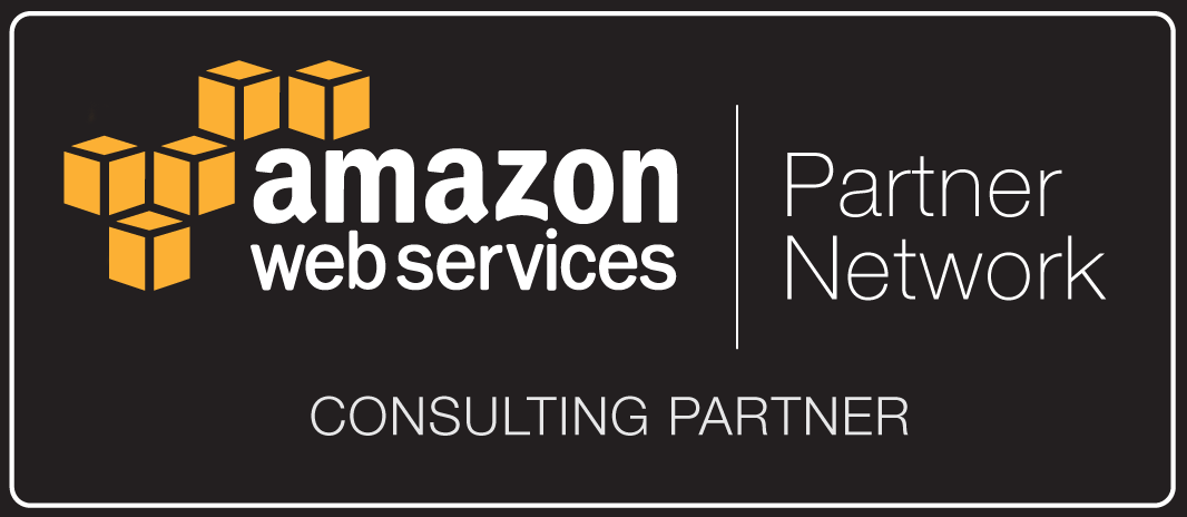 APN_Standard Consulting Partner_Dark